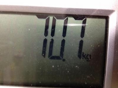 2月20日 糖質制限