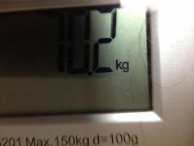 2月26日 糖質制限