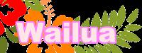 hibiscus-303191_640